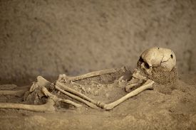 human_skeleton_with_trepanned_skull_lying_in_the_grave_cg1p36183415c_th